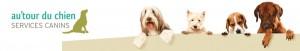 autour-du-chien-services-canins